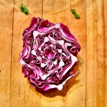 Red-Cabbage-sensory-testing
